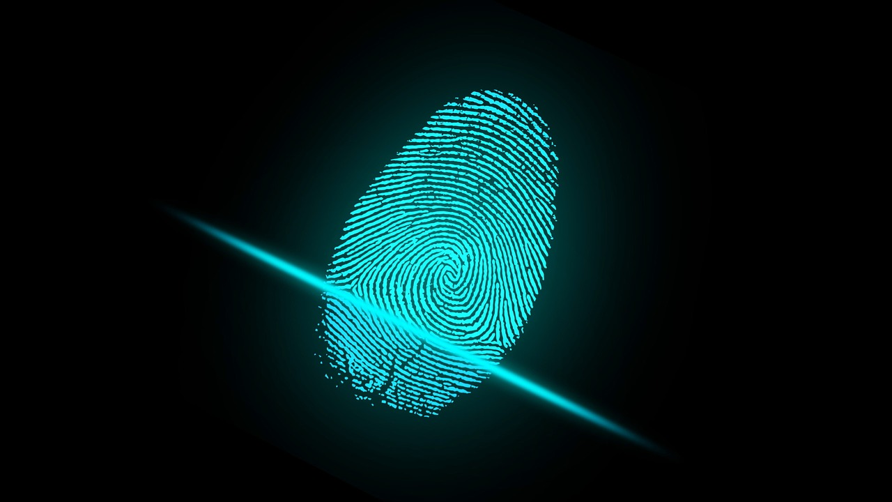 A picture of a finger print from an access control system